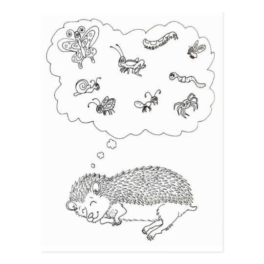 Hedgehog Dreams Postcard