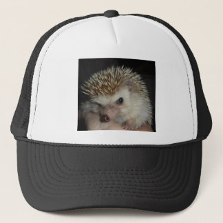 Hedgehog Hat