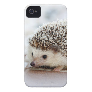 Hedgehog iPhone 4 Cover