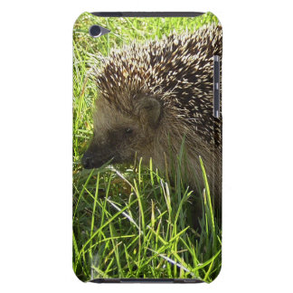 Hedgehog  iTouch Case iPod Touch Cover