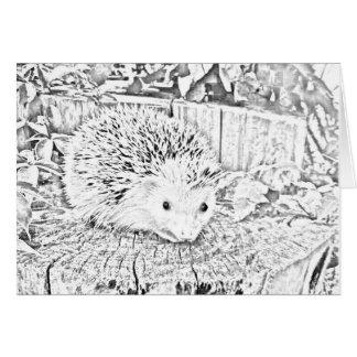 Hedgehog note card