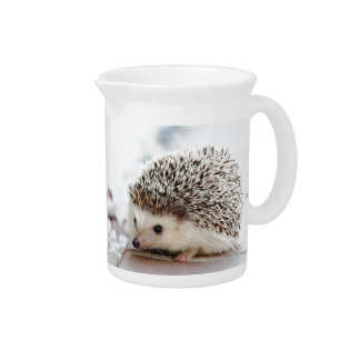 Hedgehog Pitcher