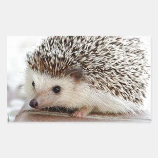 Hedgehog Rectangular Sticker