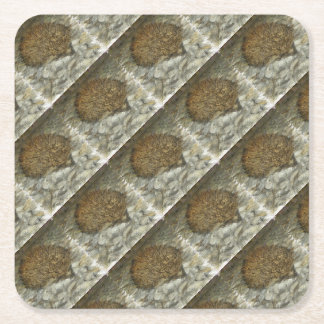 Hedgehog Square Paper Coaster