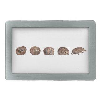 Hedgehogs in a line rectangular belt buckle