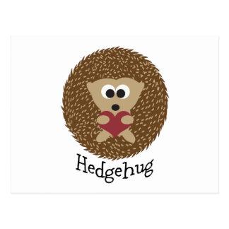 Hedgehug Hedgehog Postcard