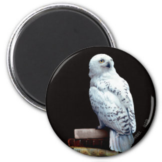 Hedwig on books 6 cm round magnet