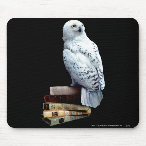 Hedwig on books mousepad