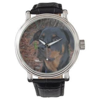 Heidi Rottweiler Watch