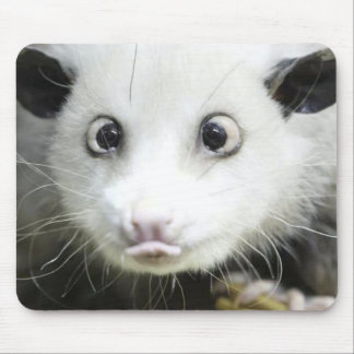 Heidi The Cross Eyed Opossum Mouse Pad