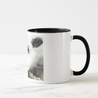 Heidi The Cross Eyed Opossum Mug