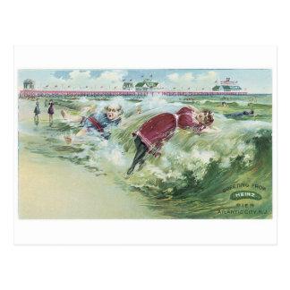 Heinz Postcard