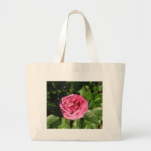 Heirloom Hybrid Tea Rose 027 Tote Bag