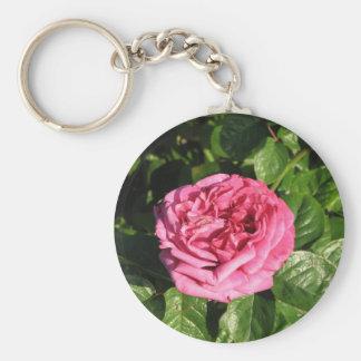 Heirloom Hybrid Tea Rose 027 Key Chain