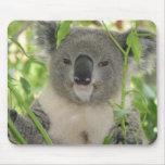 Helaine's Koala Bear Mouse Pad
