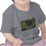 Helaine's Koala Bear T Shirts