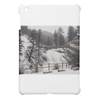 Helen Hunt Falls in Winter iPad Mini Cases