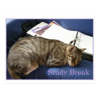 Helen's Study Break Postcard