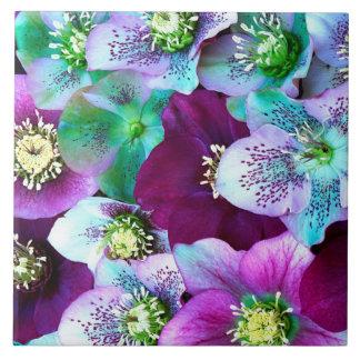 Heliborus pattern of winter blooming flower, large square tile