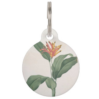 """""""HELICONIA"""" PET ID TAG"""