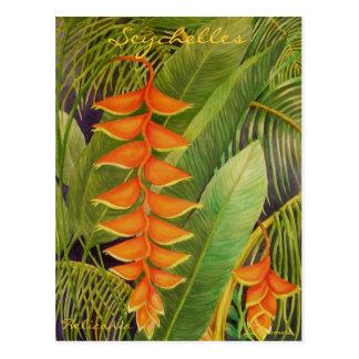 Heliconia Postcard
