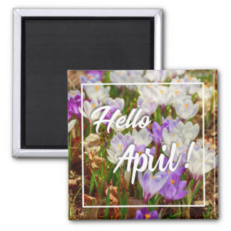 Hello April! Quote Magnet