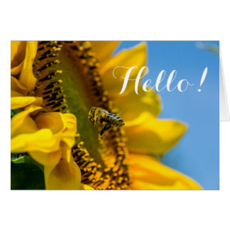 Hello Bee on Sunflower Macro Photo Blank Note Card