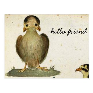 hello bird friend postcard