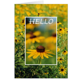 Hello - Black-Eyed Susans Greeting Card