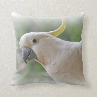 Hello Cockie Cushion