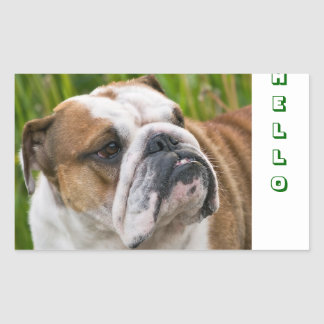 Hello Cute English Bulldog Greeting Stickers