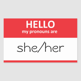HELLO my pronouns are she/her Sticker