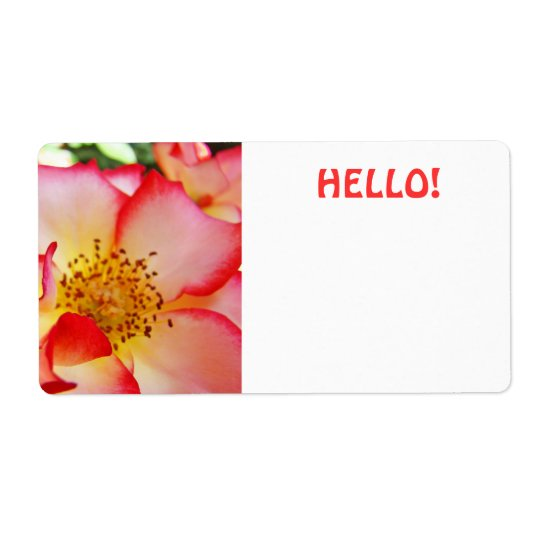 HELLO Name Tags Bright Colourful Conferences