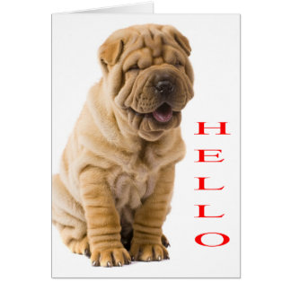 Hello Shar Pei Puppy Dog Blank Card