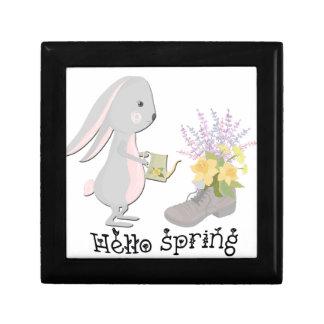 hello spring gift box