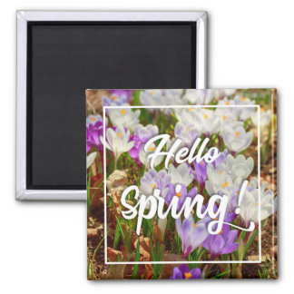 Hello Spring! Square Magnet