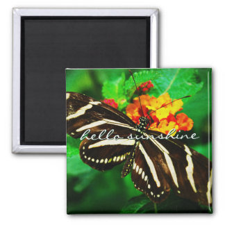 """""""Hello sunshine"""" black and white butterfly photo Magnet"""