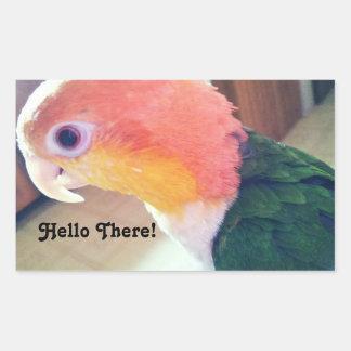 Hello There Bird Rectangular Sticker