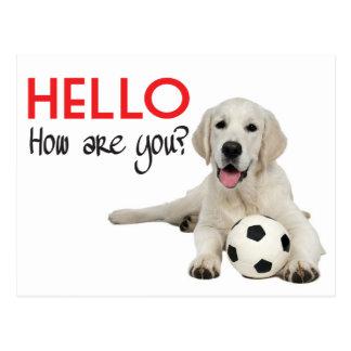 Hello Yellow Labrador Retriever Post Card