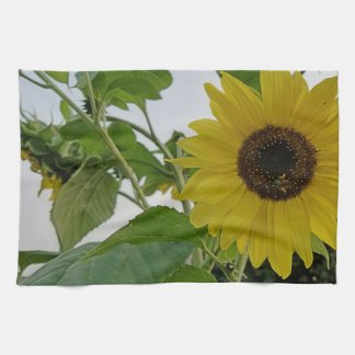 Hello Yellow Sunflower Kitchen Towel