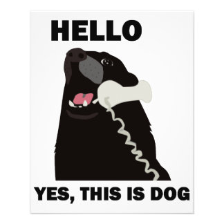 HELLO YES THIS IS DOG telephone phone 11.5 Cm X 14 Cm Flyer