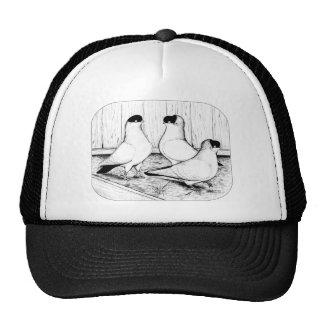Helmet Pigeon Trio Cap