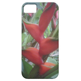Heloconia iPhone 5 Covers