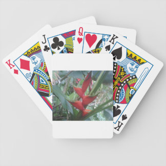 Heloconia Poker Deck