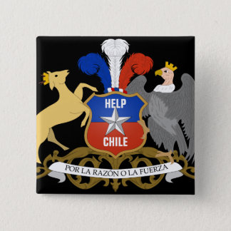 HELP CHILE Coat Of Arms 15 Cm Square Badge