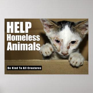 Help Homeless Animal Poster