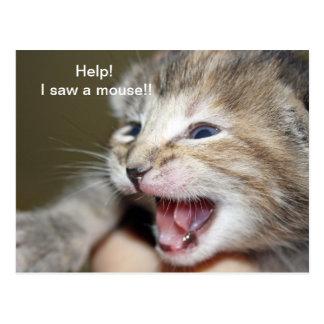 """""""Help i saw a mouse!"""" Postcard"""