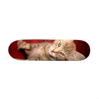 Hemingway Kitten Skateboard