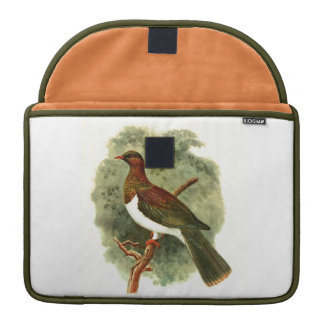 Hemiphaga Spadicea Rickshaw MacBook Pro Sleeves 13