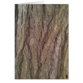 Hemlock Tree Bark Card
